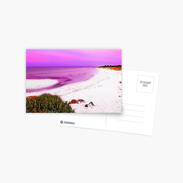 Purple Sunset Postcard