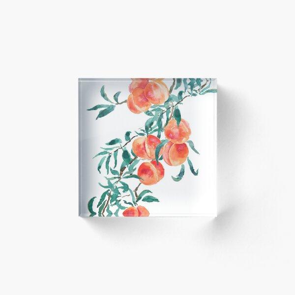 pink peach watercolor  Acrylic Block