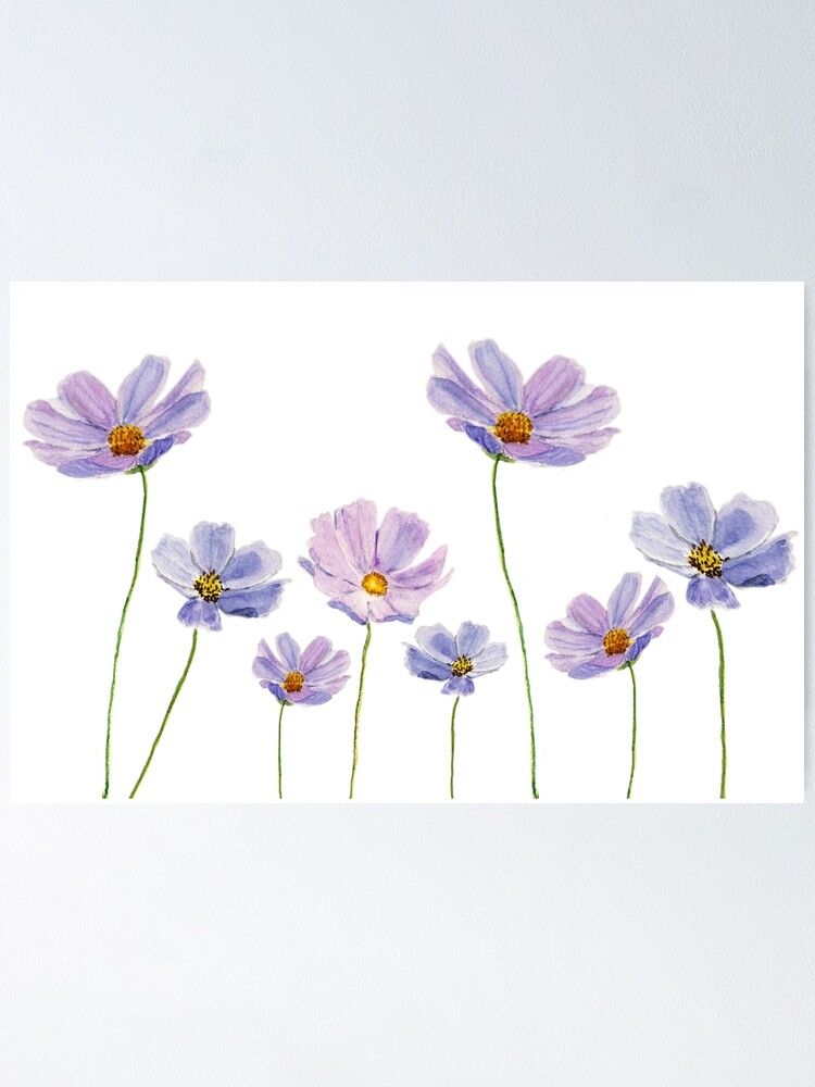 Alternate view of purple cosmos flowers watercolor Poster