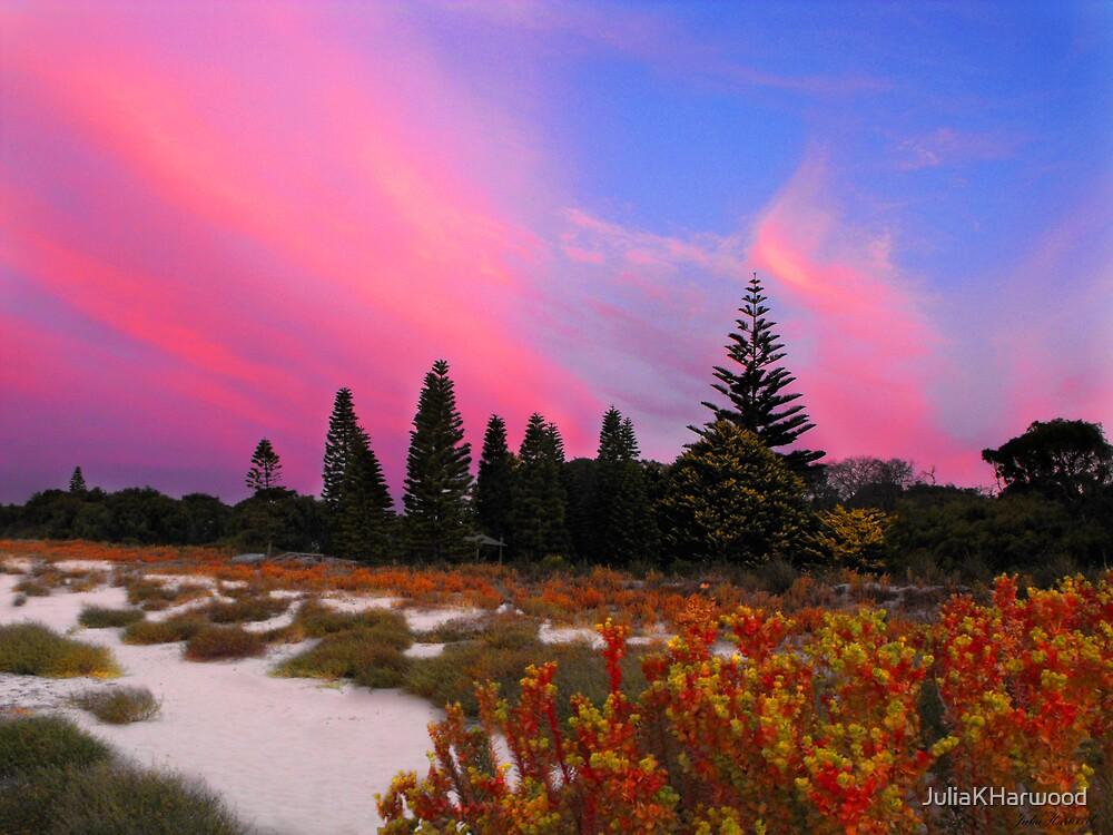 Pink Sunset by JuliaKHarwood
