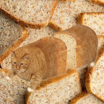 Cat Loaf by Elisecv