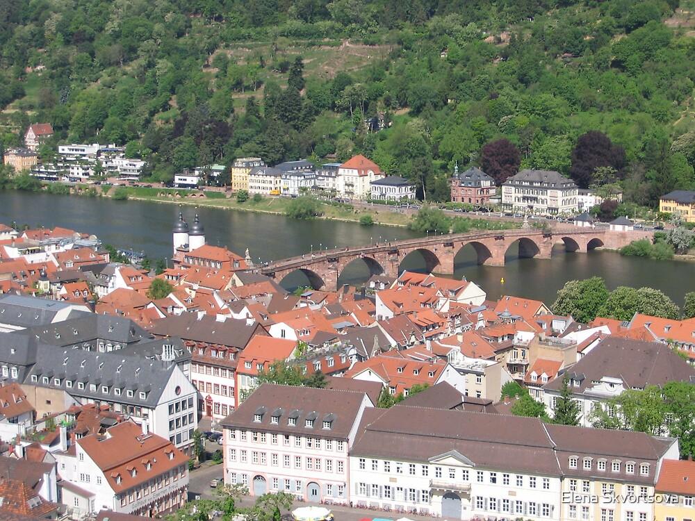 Heidelberg Old Town by Elena Skvortsova