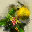 Watercolor Lemon and Blossoms on a Tree by rhamm
