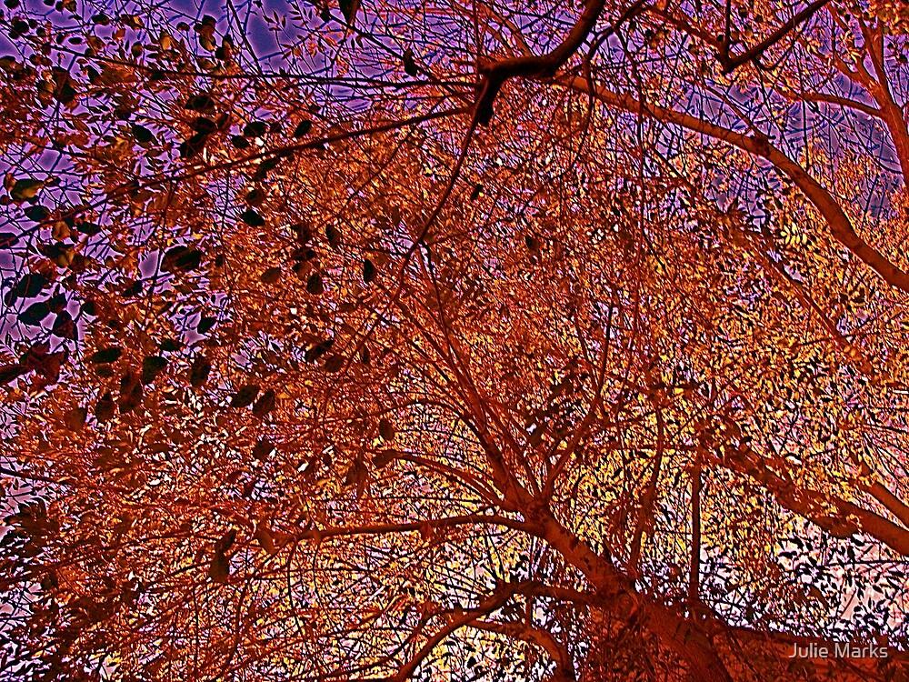 Leaves of estranged Autumn by Julie Marks