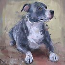 Loose Painting of a Gray Pit Bull  by ibadishi