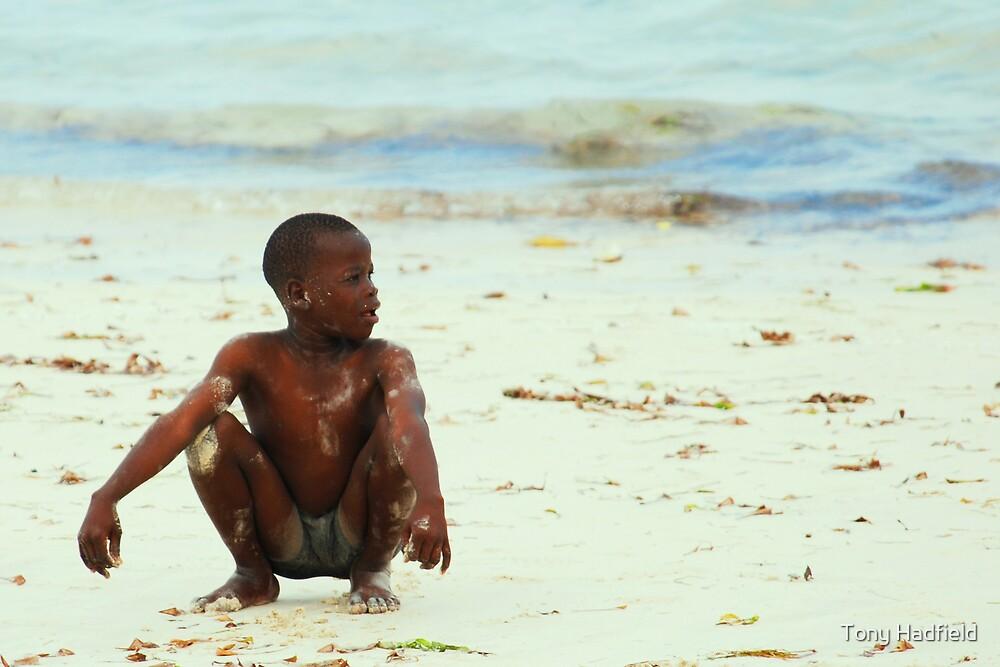 Beach Boy by Tony Hadfield