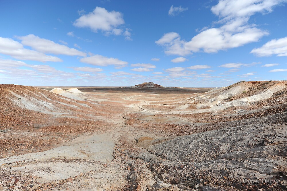 Painted Desert by James  Harvie