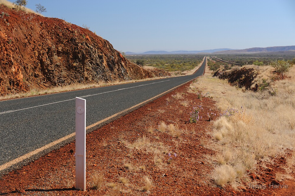Never ending road by James  Harvie