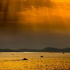 Croatian Sunset from Dubrovnik by Gordon Holmes