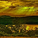 Golden sun rays by LudaNayvelt
