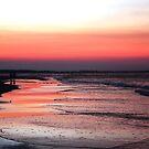 """Sunset Walk"" by Alton Coleman"