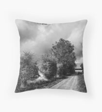 John Muir Way Throw Pillow