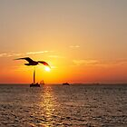 The Famous Key West Sunset by Kay Brewer