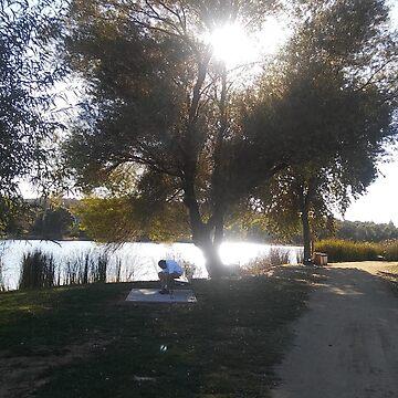 Cameron Park Lake by lyoung403b