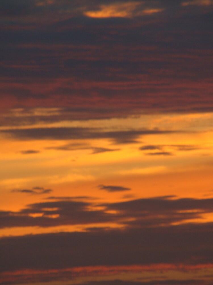 Golden Sky by SusanaB