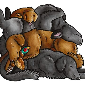 Sleeping pile of Flat-coated Retriever dogs by animalartbyjess