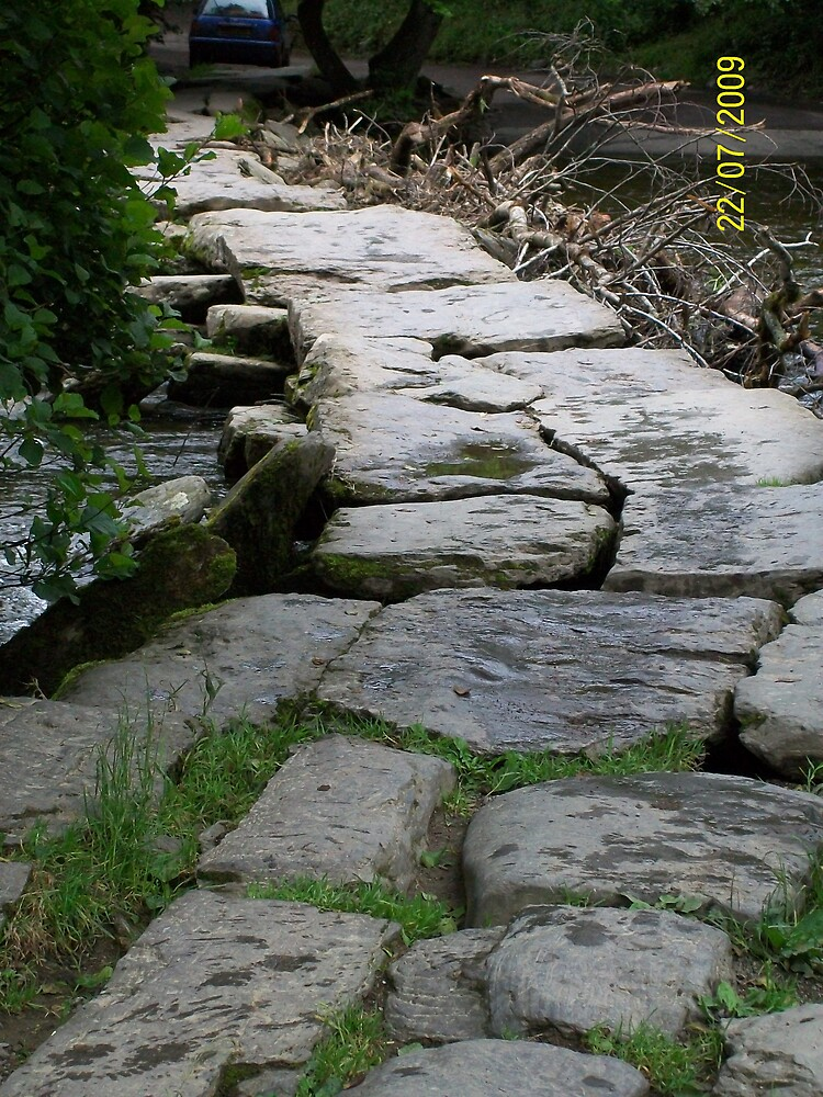 tarr steps somerset by stardust8