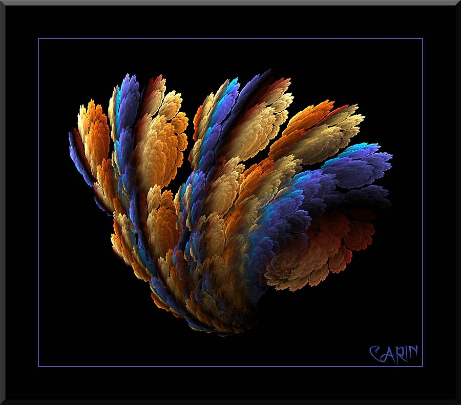 Wild feather by FractaliaNo1