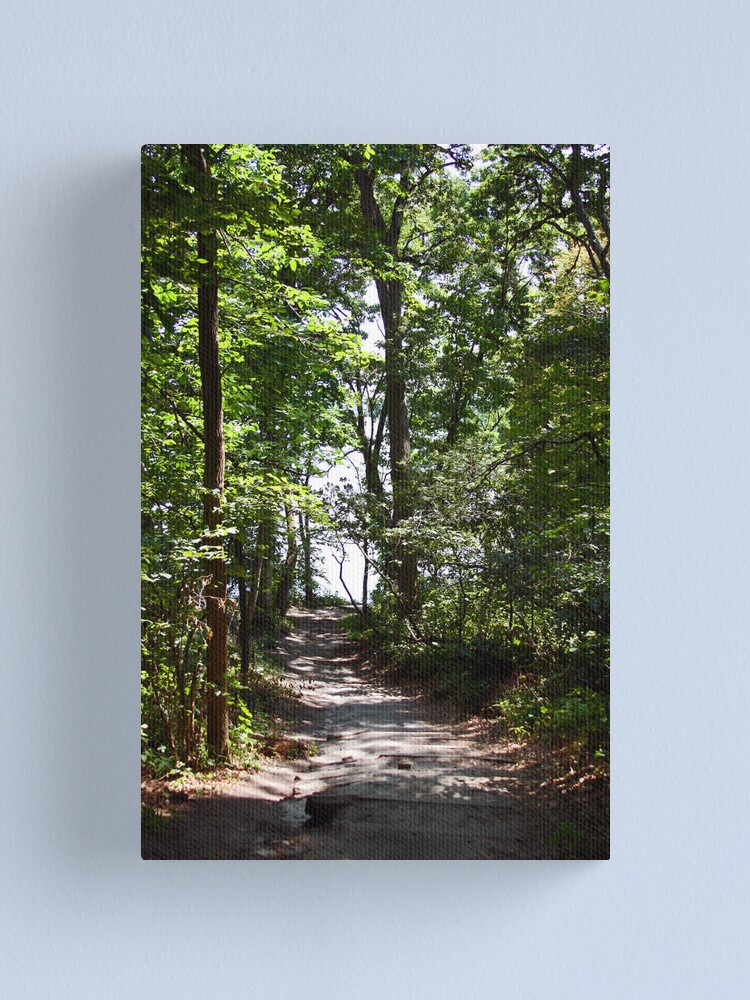 Alternate view of The Road Less Traveled Canvas Print