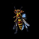 Wasp by winston53660