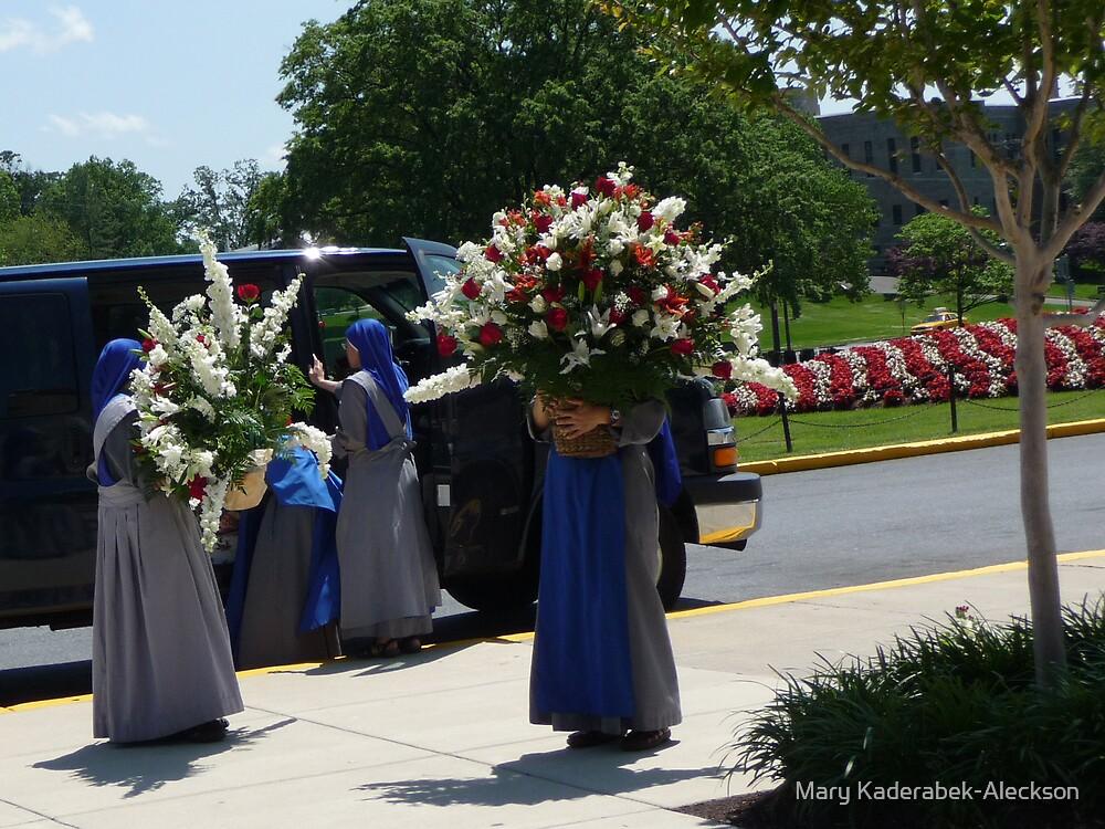 Flower Nuns by Mary Kaderabek-Aleckson