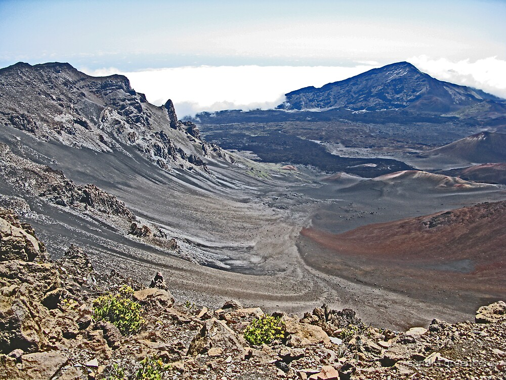 Haleakala Crater, Maui Hawaii2 by sandra greenberg