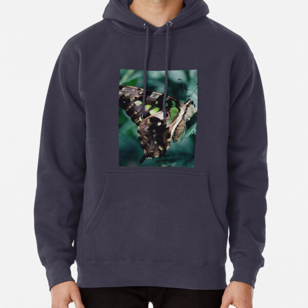 Malachite Butterfly Pullover Hoodie