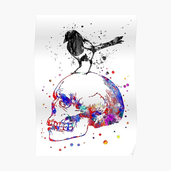 Magpie on a skull Poster