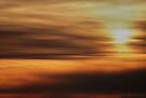 Sunburnt by Tom Vaughan