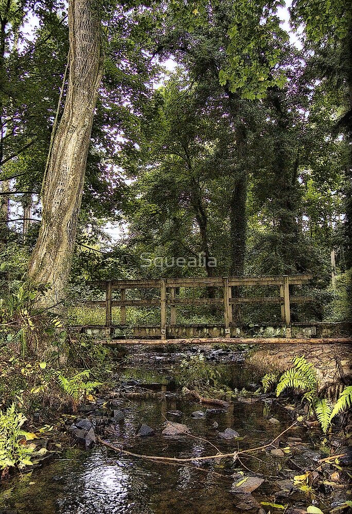 Trickling water below the wooden bridge. by Squealia
