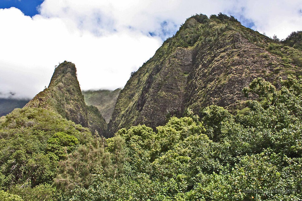 Iao Valley, Wailuku, Maui, Hawaii by sandra greenberg
