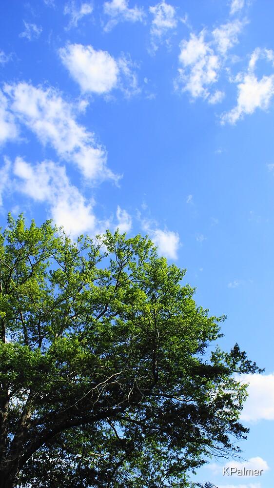 Spring Skies by KPalmer