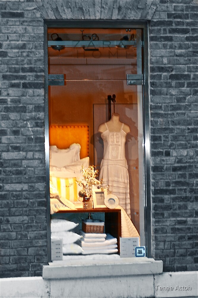 Window Shopping by Tenee Attoh