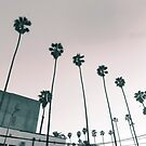 Hollywood Vibe by Jim Fisher