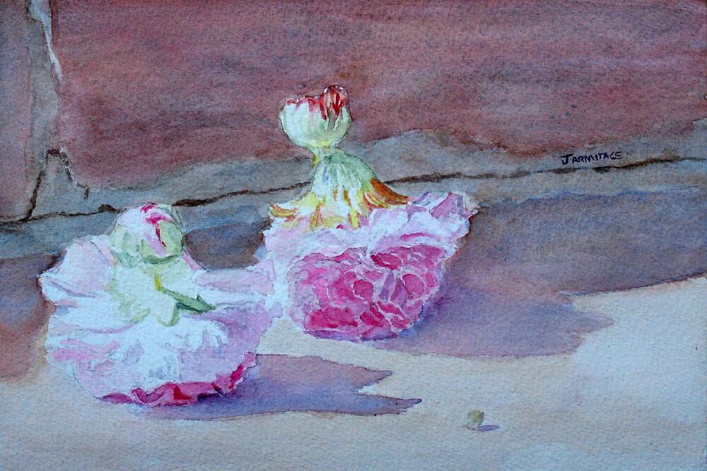 Wall Flowers  by JennyArmitage