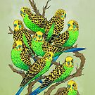 Green and Gold Budgies by Marta Tesoro