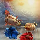Jousting Siamese Fighting Fish by Tom Parker