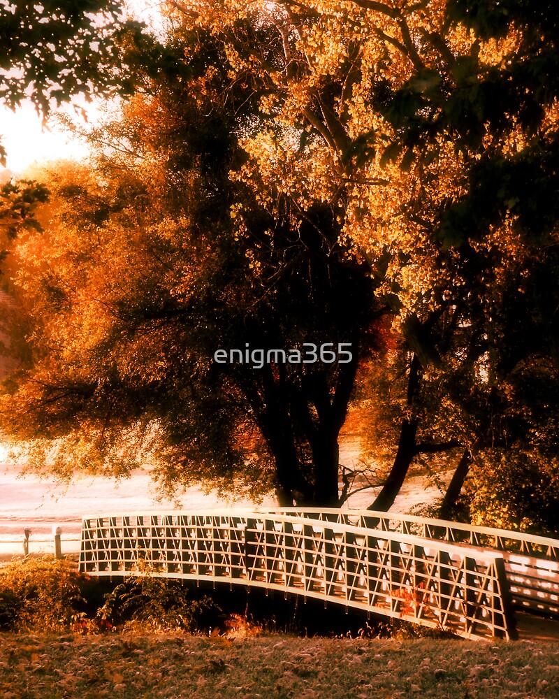 Bridge at Sunrise by enigma365