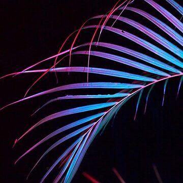 Neon palm by MeserQ