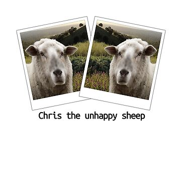 Chris the unhappy sheep by loganferret