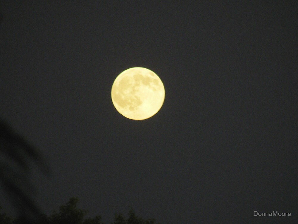 Tonights' Moon by DonnaMoore