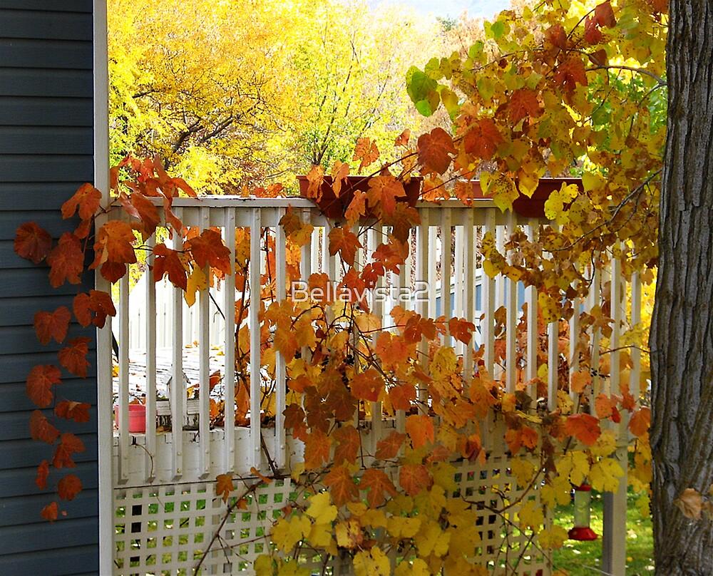 Forever Autumn by Bellavista2