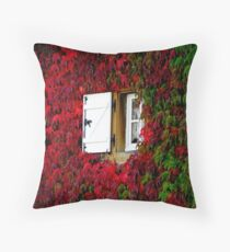 SIDE WINDOW Throw Pillow