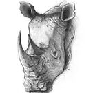 Rhinoceros by mikekoubou