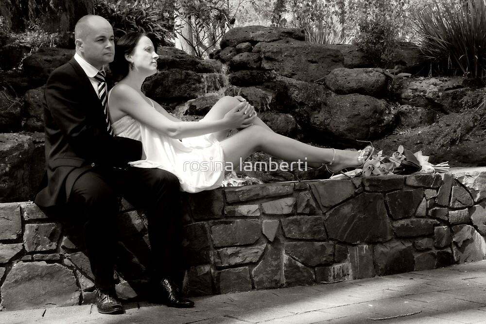 Love is a beautiful thing by rosina lamberti