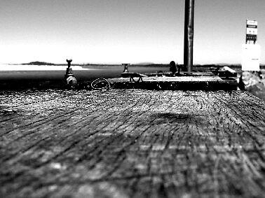 Harrington Fishing 1 by deeanne