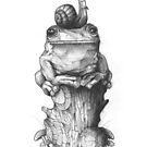 Frog and Snail by mikekoubou