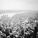 Fog - New York City by Vivienne Gucwa