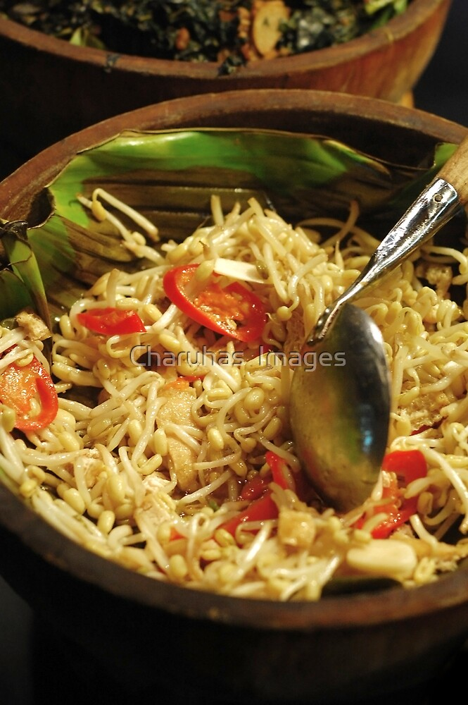 Bean Sprouts with Fried Bean Curd Salad by Charuhas  Images