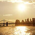 Sunset - New York City by Vivienne Gucwa